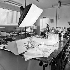 Atelier photographie aujourd'hui ! 📷 En vue de l'édition de nos futurs catalogues, notre photographe Hervé Le Reste a fait le déplacement au laboratoire de Pluvigner afin de sublimer nos créations au travers de splendides clichés ✨ Le tout sous l'œil averti de notre talentueuse graphiste et de Maëlig 🧐  Hâte de voir le résultat final ✨ On partagera ça avec vous le moment venu... Patience... ⏳  #aupetitprince #auray #baud #carnac #belz #pluvigner #relaisdesserts #pastry #pastrychef #yummy #miam #gourmandise #greedy #photographie #photography #bretagne #morbihan #epv #collegeculinairedefrance